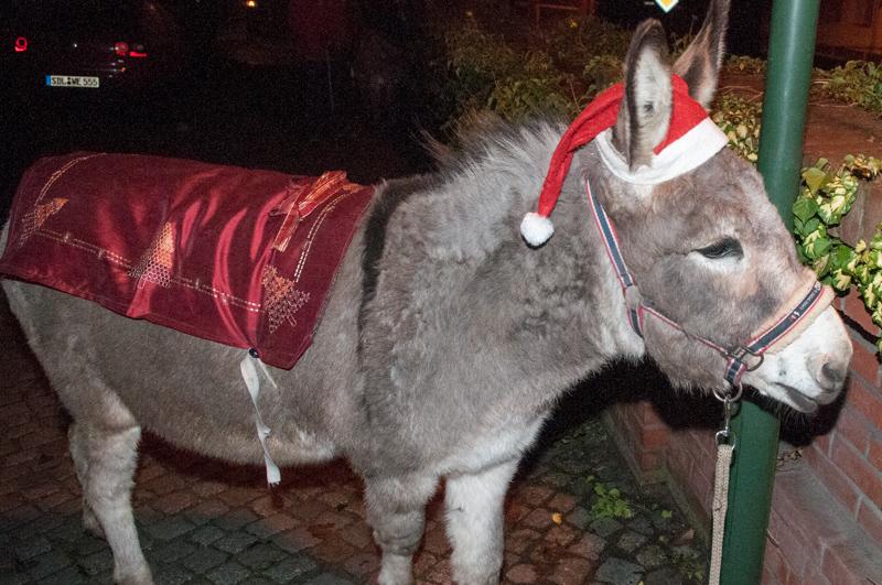 Weihnachtsesel Ole
